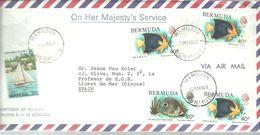 LETTER 1994 HAMILION - Bermudas