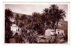 Maroc Marabout De Sidi Harassem Environs De Fes Cpa Edit L.M. à Casablanca - Marruecos