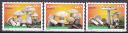 2012,  Spanien, 4719/21, Pilze, Hongos, MNH ** - 2011-... Unused Stamps