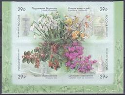 Russland Russia 2017 Flora Pflanzen Plants Blumen Blüten Flowers Arboretum Sotschi Natur, Mi. 2424-7 ** - 1992-.... Föderation