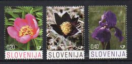 SLOVENIE - SLOVENIA - 2008 - FLEURS - FLOWERS - - Slovenia