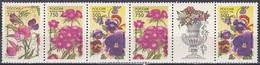 Russland Russia 1996 Flora Pflanzen Plants Blumen Blüten Flowers Garten Garden, Mi. 480-2 ** - Unused Stamps