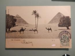 Courriers D' Egypte (années 1900) - Égypte