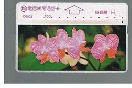 TAIWAN -      1996 FLOWERS: ORCHID                    - USED -  RIF. 10456 - Taiwan (Formosa)