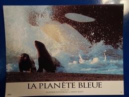 LA PLANETE BLEUE  PHOQUE ORQUE - Other Collections