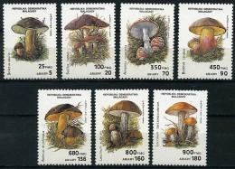 MADAGASCAR, CHAMPIGNONS, CHAMPIGNON, MUSHROOM, Setas, Yvert  N° 1007/13** MNH - Paddestoelen