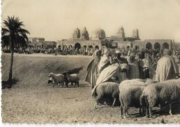 SAHARA - Marché Dans Le Sud - Western Sahara