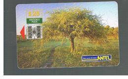 URUGUAY -   1999 FLORA: CAROB TREE                - USED  -  RIF. 10460 - Uruguay