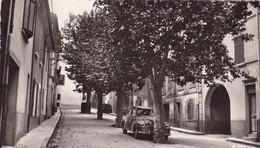 83 / NANS LES PINS / BOULEVARD DE LA MECQUE / VOITURE / CIRC 1955 - Nans-les-Pins