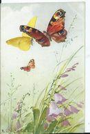 CARTE FANTAISIE - Illustration KLEIN Catharina PAPILLONS - (fabrication Suisse ) - Klein, Catharina