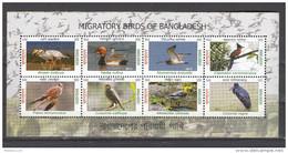 BANGLADESH, 2013, (  2012 ), Migratory Birds, Bird, Goose, Pockard, Duck, Curlew, Cuckoo,  Set 8 V,  MS,  MNH, (**) - Bangladesh