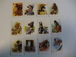 Horses Chevales Cavalos Complete Set 12 Portugal Portuguese Pocket Calendars 1992 - Calendars