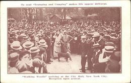 11328976 New York City Walking Woolfs New York - Vereinigte Staaten