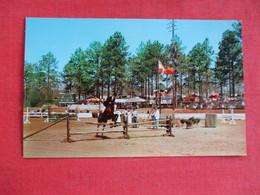 Horse Show    South Carolina > Aiken-- Ref 2914 - Aiken