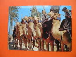 LIBYAN DESERT PATROLS.POLIZIOTTI DEL DESERTO - Libya