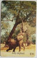 Elephant - Simbabwe