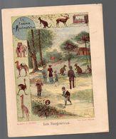 Couverture Illustrée De Cahier D'écolier : LE JARDIN D'acclimatation LES KANGOUROUS (PPP8177) - Blotters
