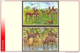 Rwanda BL 044/45**  Antilopes   MNH - Rwanda