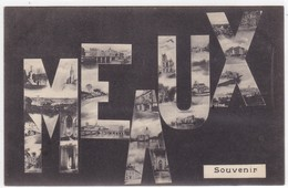 Seine-et-Marne - Meaux - Meaux