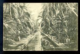 Dutch Canal, Negombo, Ceylon / Postcard Circulated, 2 Scans - Sri Lanka (Ceylon)