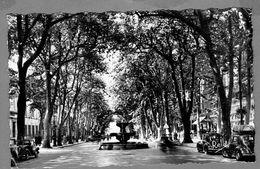 13- Aix En Provence - Le Cours Mirabeau - Aix En Provence