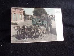 Belgique . Assche . Attelage De ( 5 Chiens ) Avant 1904. Belles Couleurs Pastel .Voir 2 Scans . - Asse