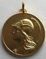 Médaille En Bronze Doré. Centro Studi  Scambi Internazionali Di Roma. 39 Mm - Professionnels/De Société