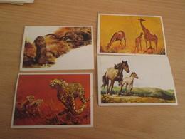"""LOT DE 4 IMAGES GENRE PANINI AUTOCOLLANTES """"BEBES ANIMAUX """" DIFIMAGE OU MAURICE - Stickers"""