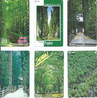 6 Télécartes Japon Japan Arbre Arbres Tree Forêt  Paysage (Z.5) - Paysages
