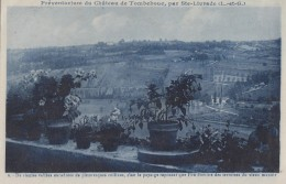 Sainte Livrade Sur Lot 47 - Château De Tombebouc - Préventorium Vue Des Terrasses - Editeur Barreau Bordeaux N° 9 Bleue - France