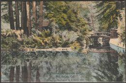 Redwood Lodge, Mill Valley, California, 1907 - Reimann Postcard - Other