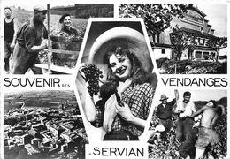 34-SERVIAN- MULTIVUES SOUVENIR DE VENDANGES - France