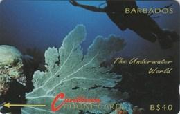*BARBADOS - 9CBDC* -  Scheda Usata - Barbades