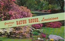 Louisiana Greetings From Baton Rouge 1981 - Baton Rouge
