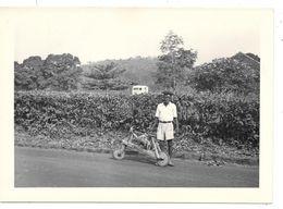 CAMEROUN - EBOLOWA Jeune Garçon Et Sa Draisienne En Bois - Régime De Bananes  - Février 1952  -format 13 X 18 - Africa