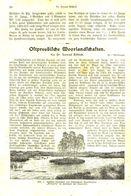 Ostpreußische Moorlandschaften / Artikel, Entnommen Aus Kalender /1909 - Books, Magazines, Comics