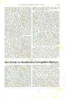 Ein Besuch Im Stockholmer Biologischen Museum / Artikel, Entnommen Aus Kalender /1909 - Livres, BD, Revues