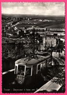 Trieste - Panorama E Tram Per Opicina - Tramway - Panorama - Animée - Edit. A CADEL - 1958 - Trieste