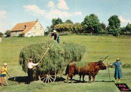 CORREZE. BORT. LES FOINS. RECOLTE. AGRICULTURE.achat Immédiat - Francia
