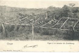 Congo Belge - Belgisch-Congo - Vigne à La Mission De Lualabourg - Nels Serie 14 No 61 - 1902 - Congo Belge - Autres