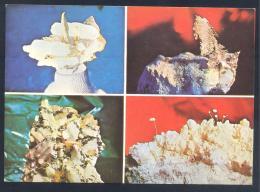 Romania 1978 Postal Stationery Card:  Minerals Mineraux Palaentology Mineralogy Fossils Fosil Fosilien - Mineralien