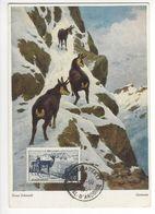 ANDORRE LA VIEILLE 1954 CARTE MAXIMUM CARD YT 1 PA ISARDS /FREE SHIPPING REGISTERED - Cartes-Maximum (CM)