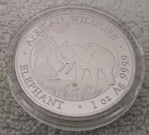 Elephant Unc Somali Republic Silver Coin Rare - Somalie