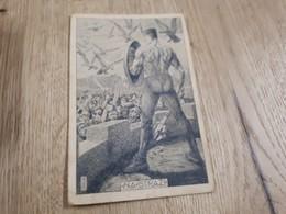 Postcard - Yugoslavia, Sokol       (26548) - Yugoslavia