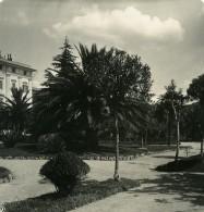 Italie La Spezia Via Mazzini Ancienne Photo Stereo NPG 1900 - Stereoscopic