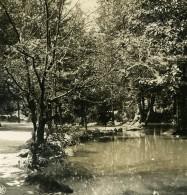 Italie Milan Jardin Public Lac Ancienne Photo Stereo NPG 1900 - Stereoscopic