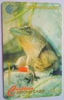 163CCIF Iguana $15 - Cayman Islands