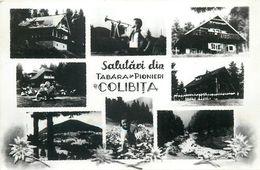 D1245 Scouts Camp At Colibita - Romania