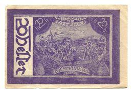 1920 - Austria - Bachmanning Notgeld N9, - Austria