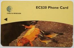 248CDMB   Birds EC$20 - Dominica